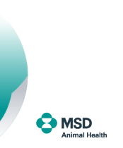 MSD Animal Health Russia